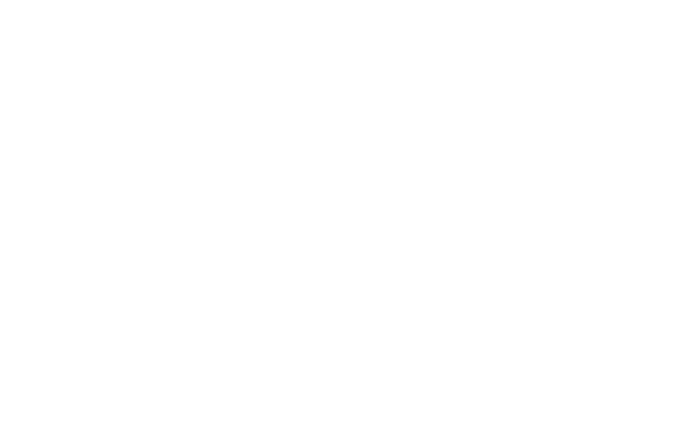 Next Wave Agility
