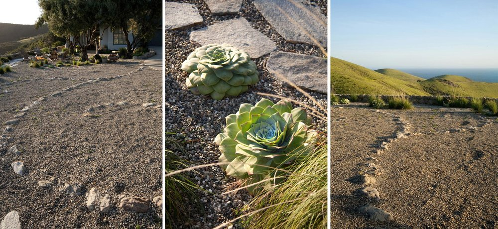 hollister-5-succulents-gravel-path.jpg