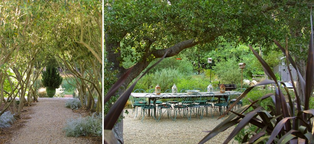 5-olive-trees-outdoor-seating.jpg