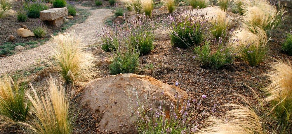 El-Pueblo-Viejo-09-pathway.jpg