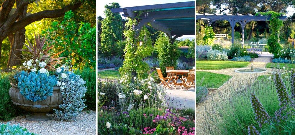 ojai-3-potted-succulents-pergola-fountain.jpg