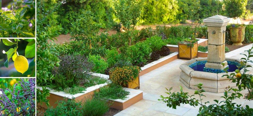 6-herb-garden.jpg