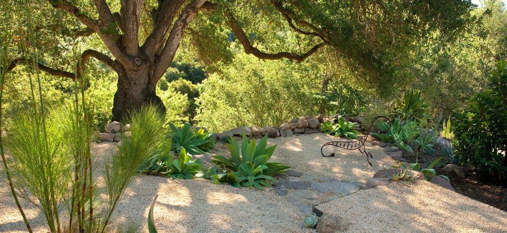 7-oak-tree-gravel.jpg