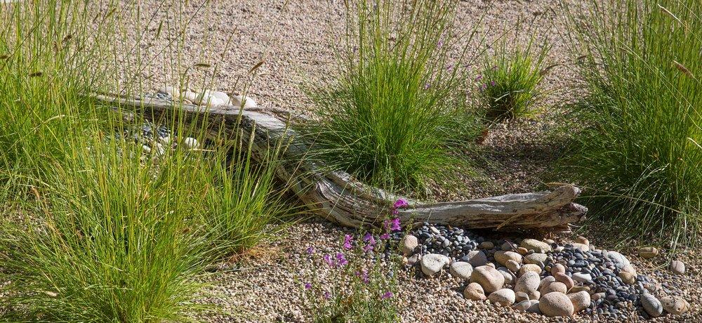 wood-art-in-grass.jpg