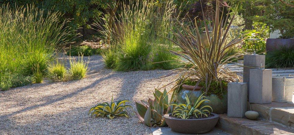 pots-grasses-concrete.jpg