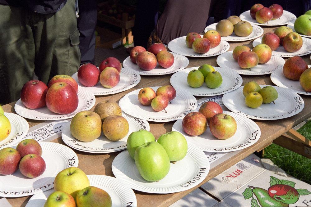 Fenton House Apple Day, London 2008