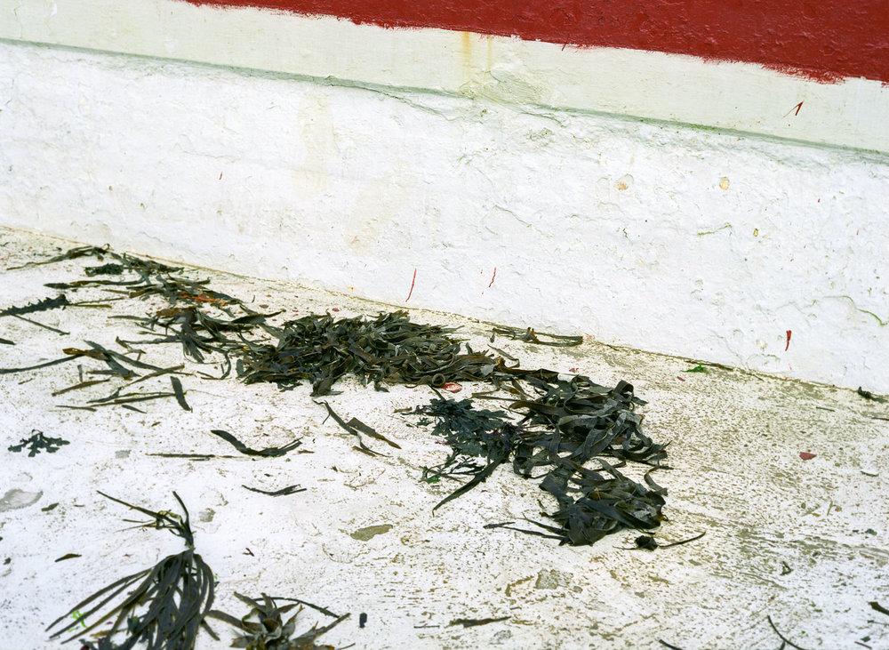 Brixham Lido, 2008