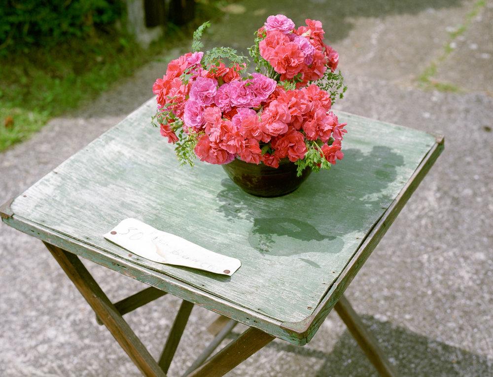 Elsie's flowers, Isle of Wight, 2008