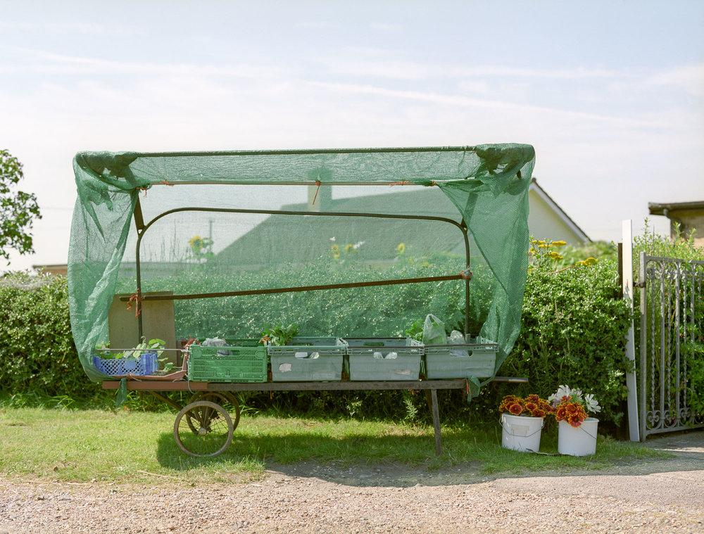 Honesty Box, Suffolk, 2008
