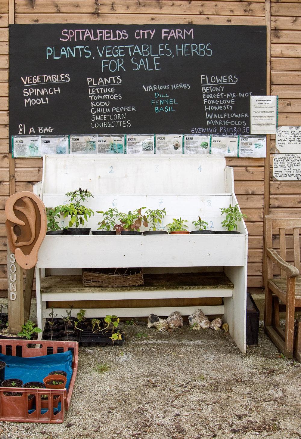 Spitalfields City Farm