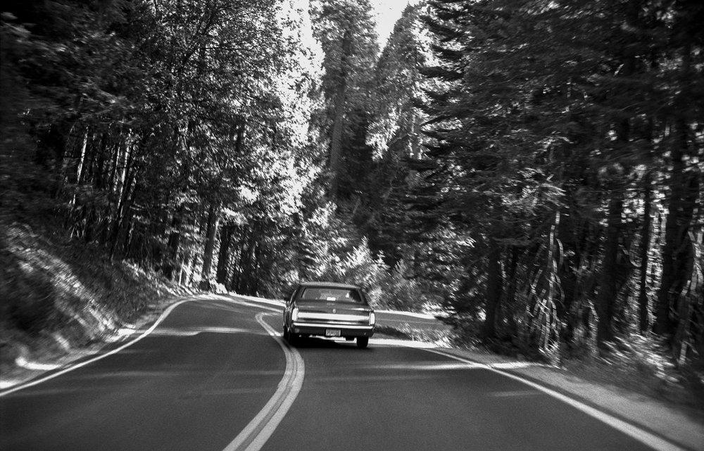 Yosemite ii, 2001