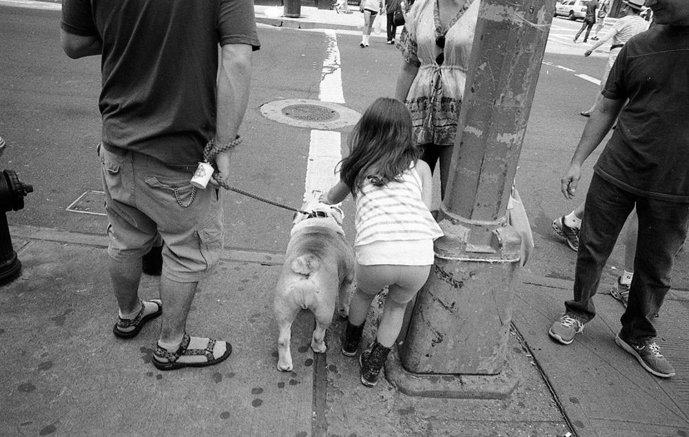 StreetDogGirlButts.jpeg