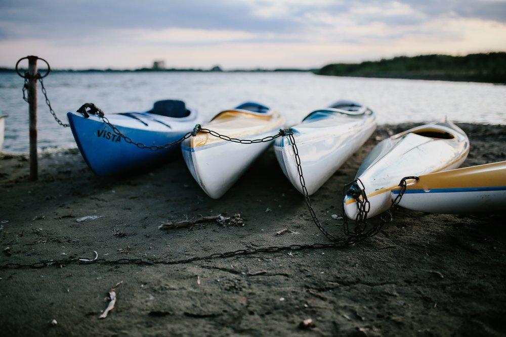 kaboompics_Kayaks moored on the shore.jpg