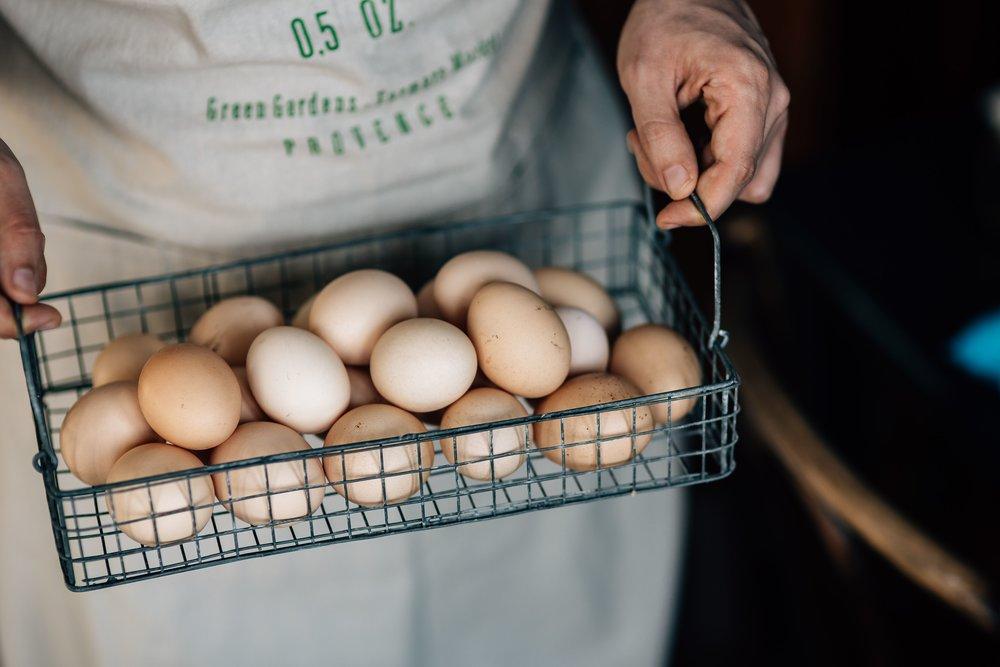 kaboompics_Wire mesh basket with fresh farm eggs.jpg