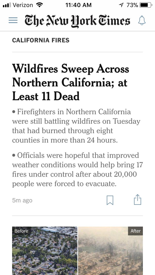 NYT-bullets.jpeg