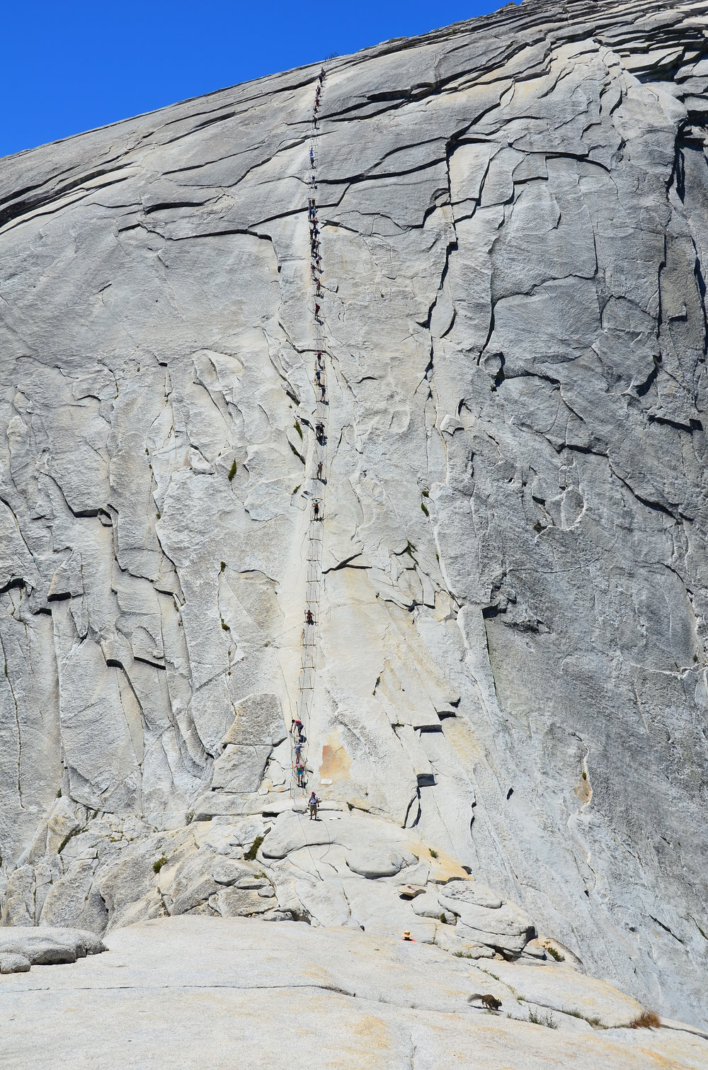 See the line of people going up the cables? Yep, hiking half dome is just as steep as this photo makes it appear.