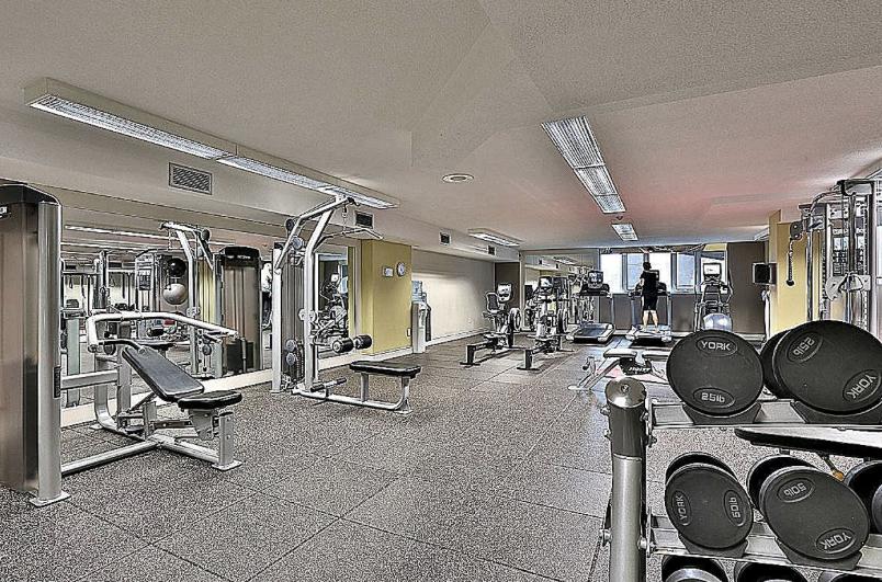 web_gym.png