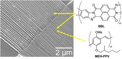 3 - polymer nanowires.jpg