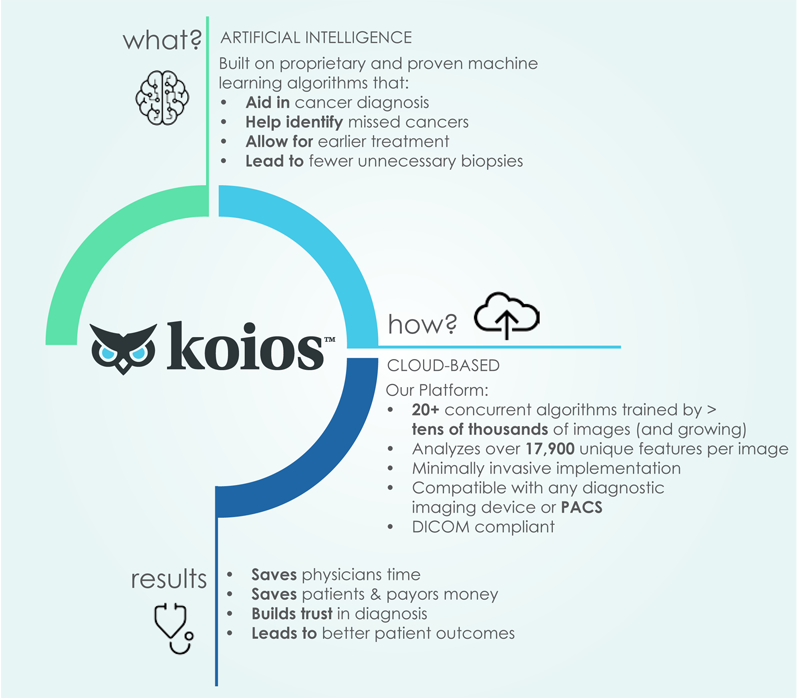 Koios What How Results Infographic NEW small.png