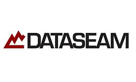 dataseam.jpg