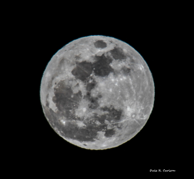 Wolf Super Moon - January 1, 2018   Photo by Dale R. Carlson