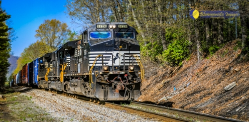 Train Spotting in Black Mountain NC -- Photo by Dale R. Carlson