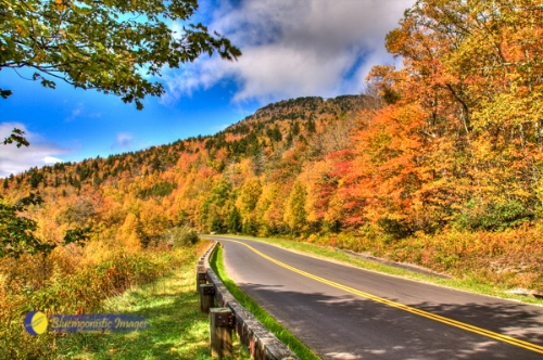 Fall Parkway - by Dale R. Carlson