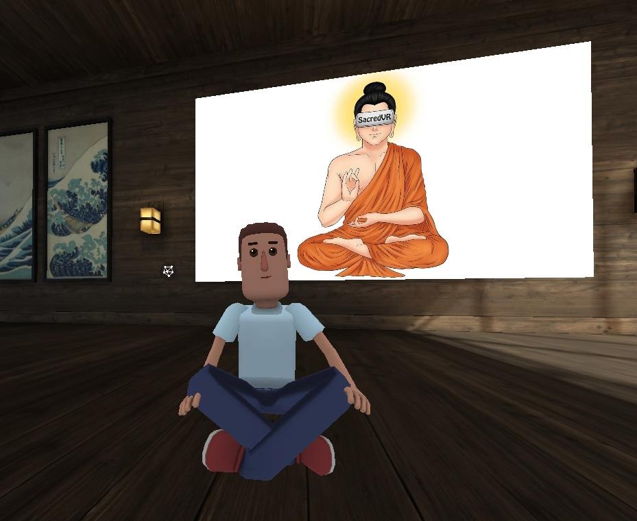 VRmeditation pic.jpg