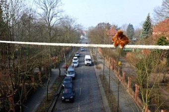 A squirrel bridge in East Berlin. Photo courtesy of Aktion Tier.
