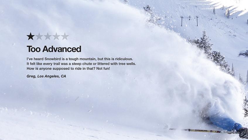 snowbird ad.png