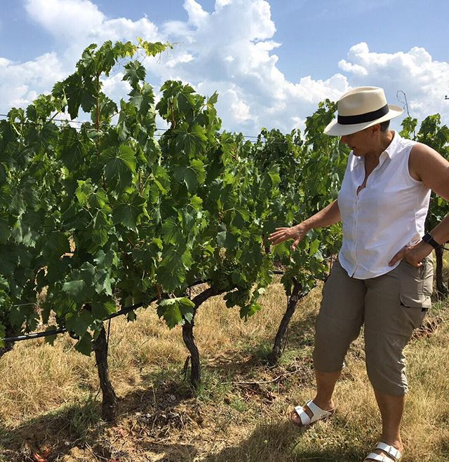 "Our #WCW, Cristina Geminiani, describes her winemaking philosophy in this way, ""In my winemaking I aim to complete and integrate each of the values of each single vineyard, fully respecting the high potential of the fruit from each special area. Only by releasing the pure character of the vines in each microclimate can we show the real value and richness of our terroir."" Shop all Zerbina wines at @vinovorela for 10% off this week in honor of Cristina. She's awesome. (offer expires: 03-28) #womenshistorymonth"