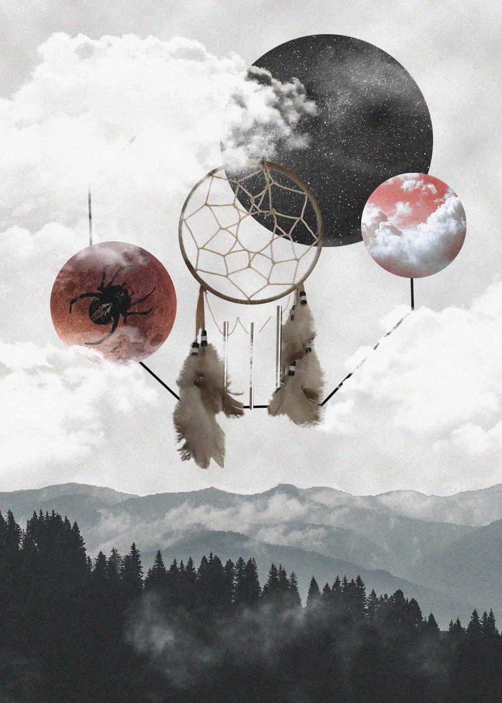 Web of Wonder | Rachel Bishop