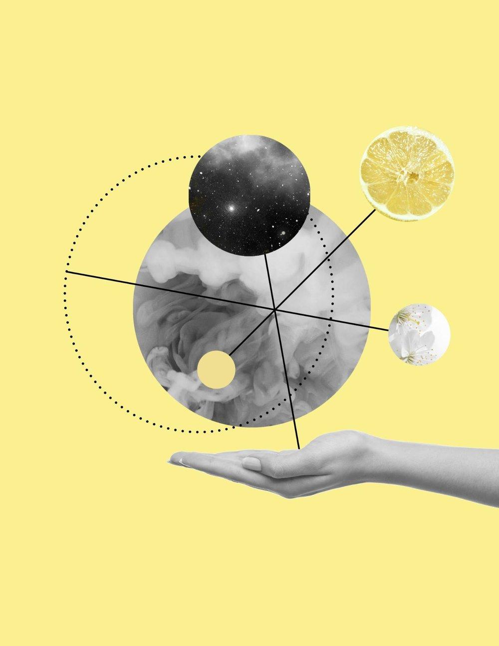 Hidden Affinity | Carolina Malagamba