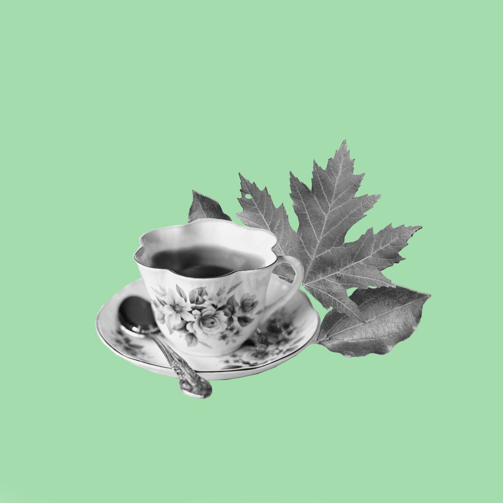 Tea-Leaf Reading | Anna Warfield
