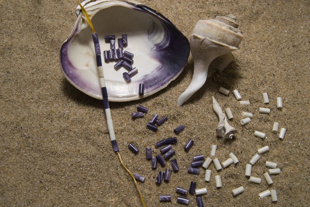 Wampum, whelk, can clam shells