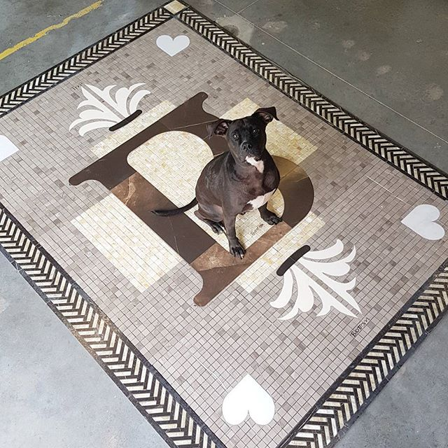 Brown's Socialhouse Custom Floor Medallion (pit bull friend for scale)
