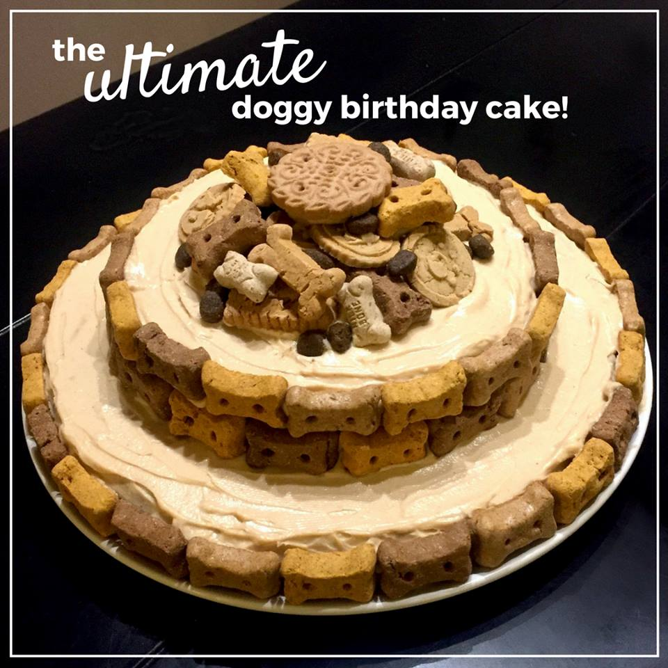 DIY Spoiled Dog Cake