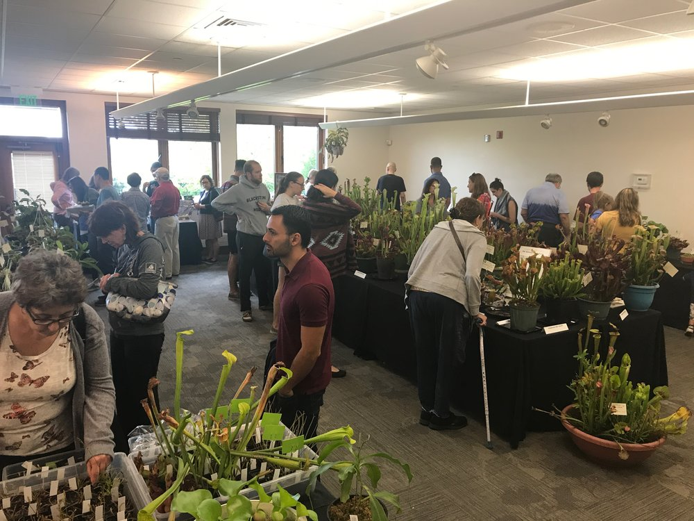 Our show at  Tower Hill Botanic Gardens  attract close to 3,000 people each year. Kids to adults alike, all awed by the sinister, yet beautiful world of carnivorous plants!