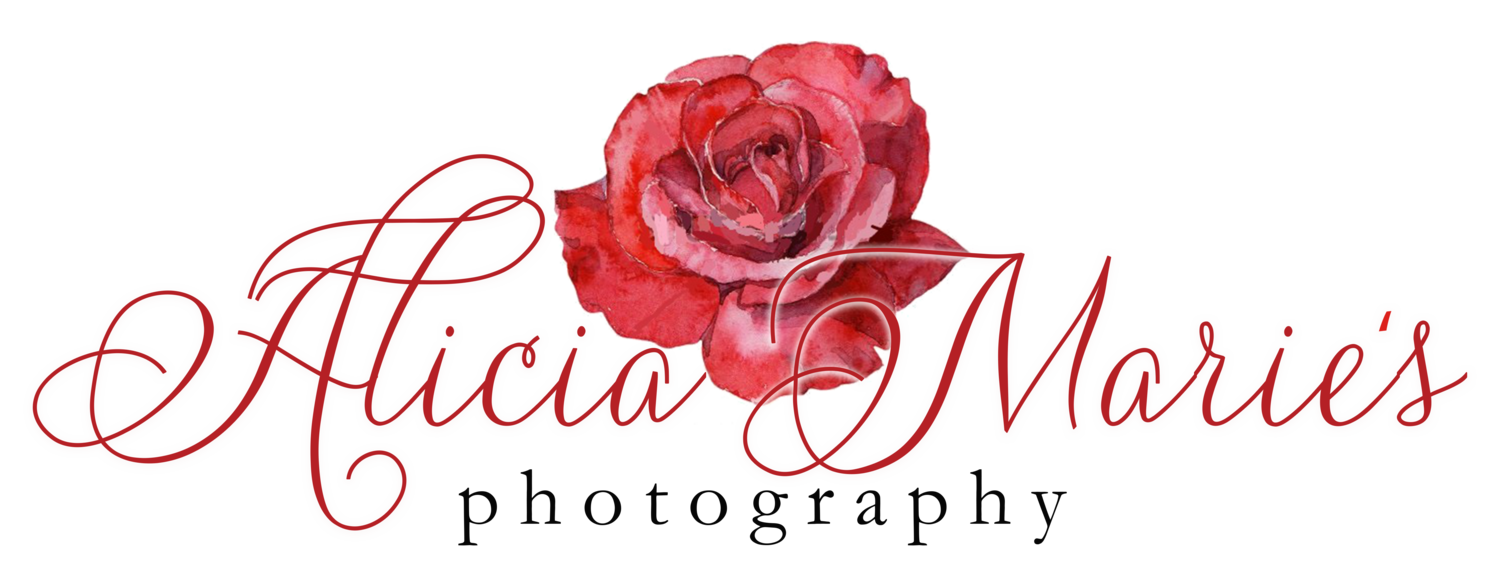 Alicia Marie's Photography - NWI