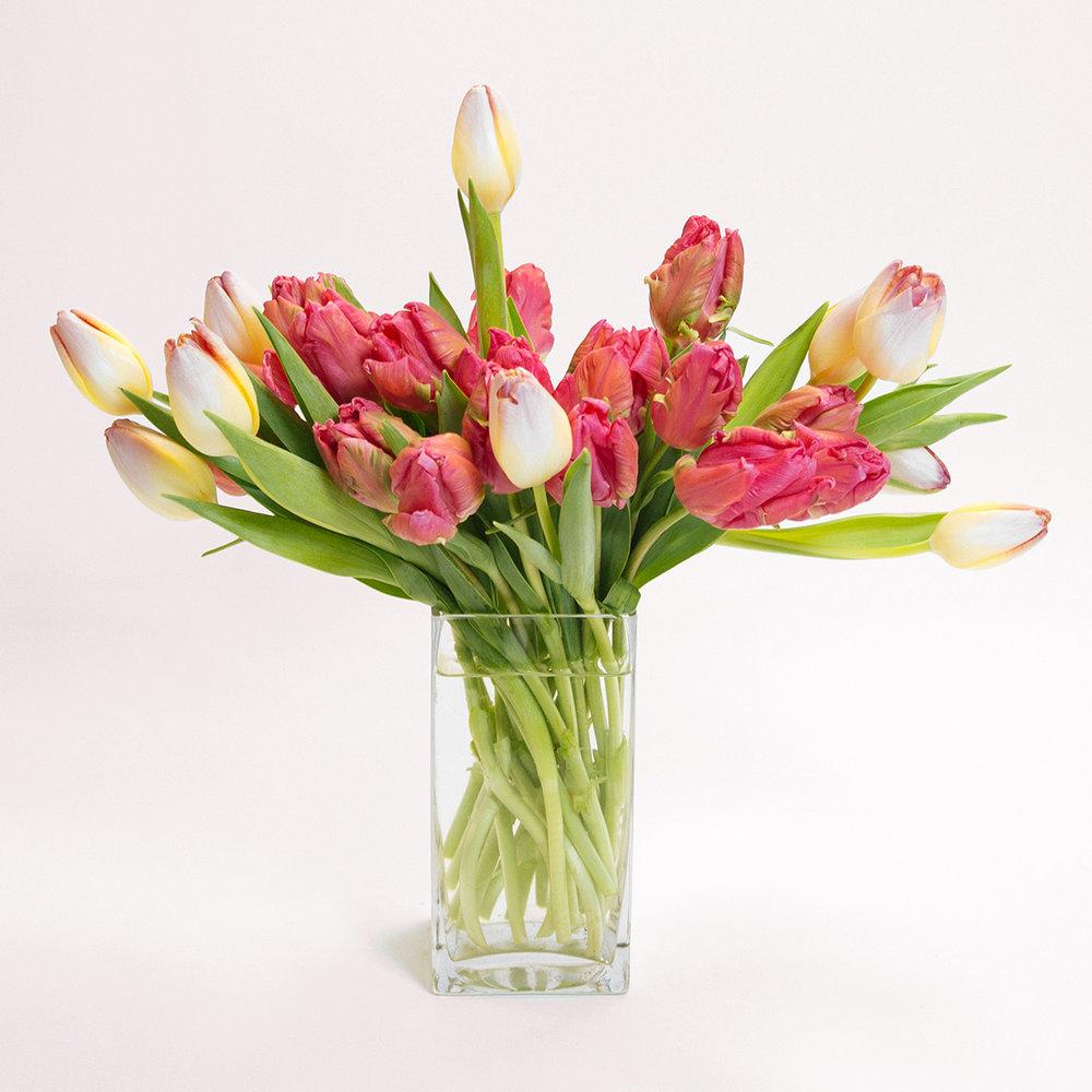 floom-flowers-by-eryn-san-francisco-valentines-day-13-wrmr-bkgrnd.jpg