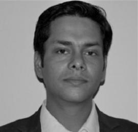 Mayank Garg Independent Advisor Energy Markets