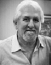 Vincent Amato Sobrinho Executive Chairman ANDIPA