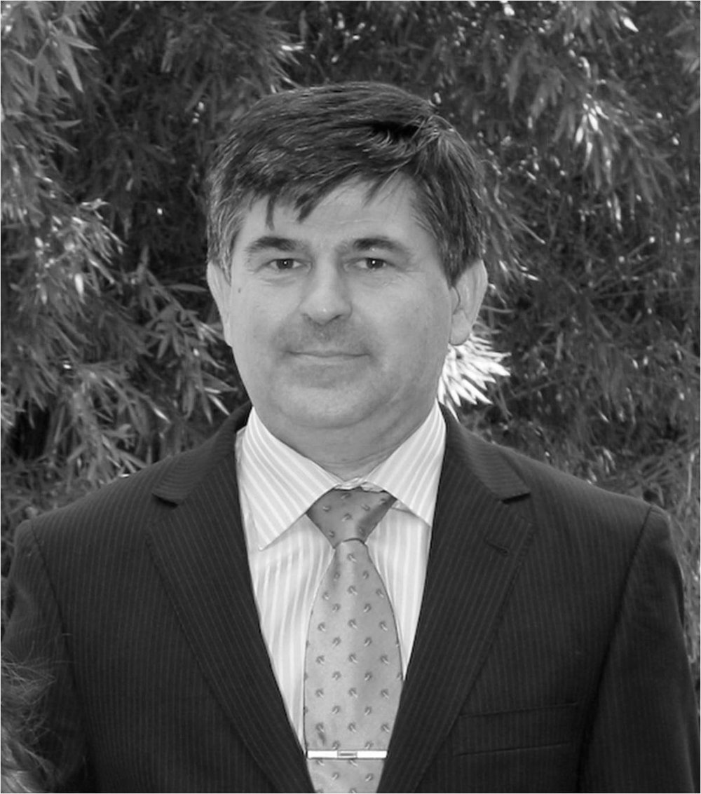 DR. MIGUEL ÁNGEL SANJUÁN, HEAD OF THE CEMENT AND MORTARS AREA, SPANISH INSTITUTE OF CEMENT AND ITS APPLICATIONS (IECA)