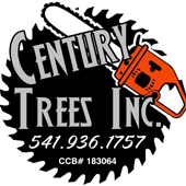Century Trees FB Profile Pic.png