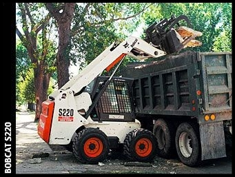 Bobcat with graple.jpg