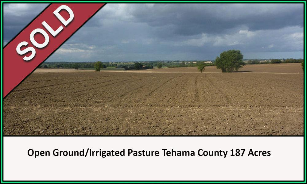 Open Ground Irrigated Pasture Tehama County California