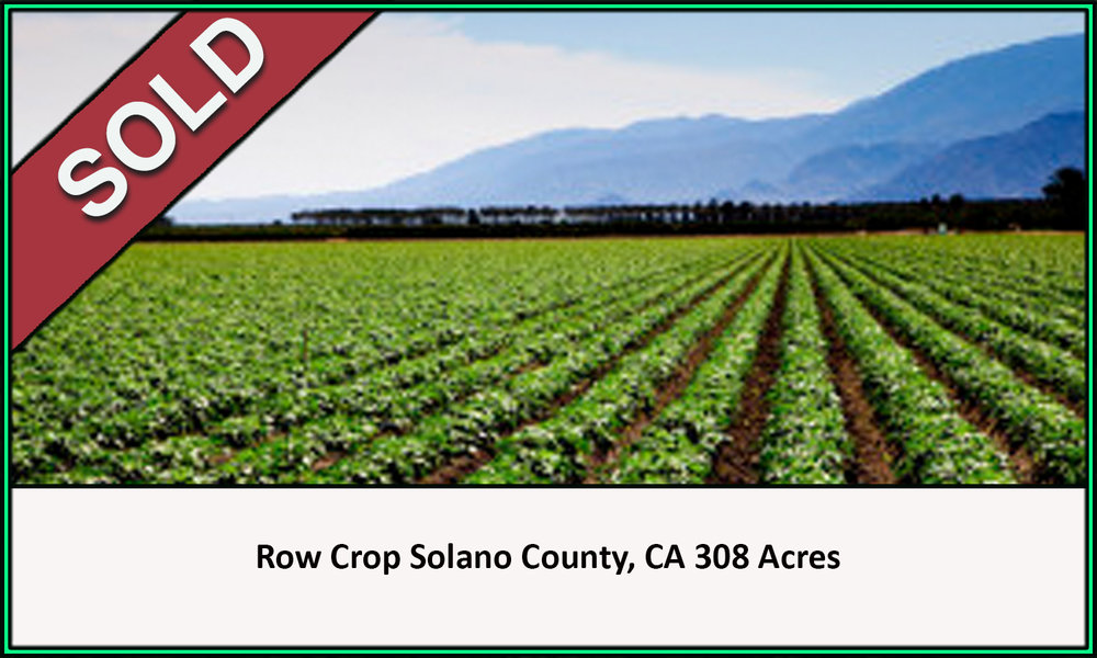 Row Crop Solano County Sold