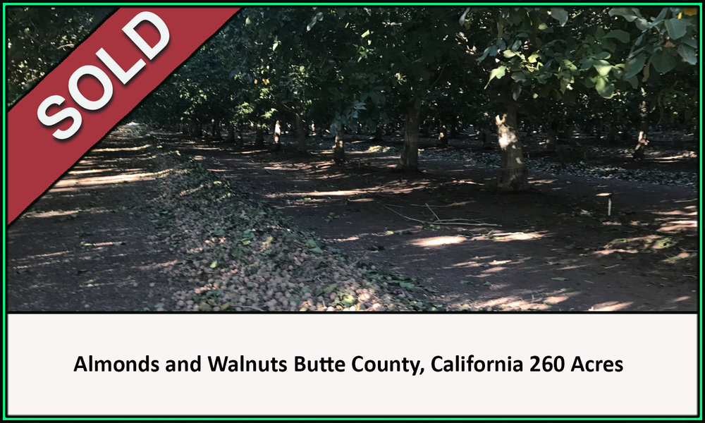 Sold Almond and Walnut Orchard 260 Acres Butte County California
