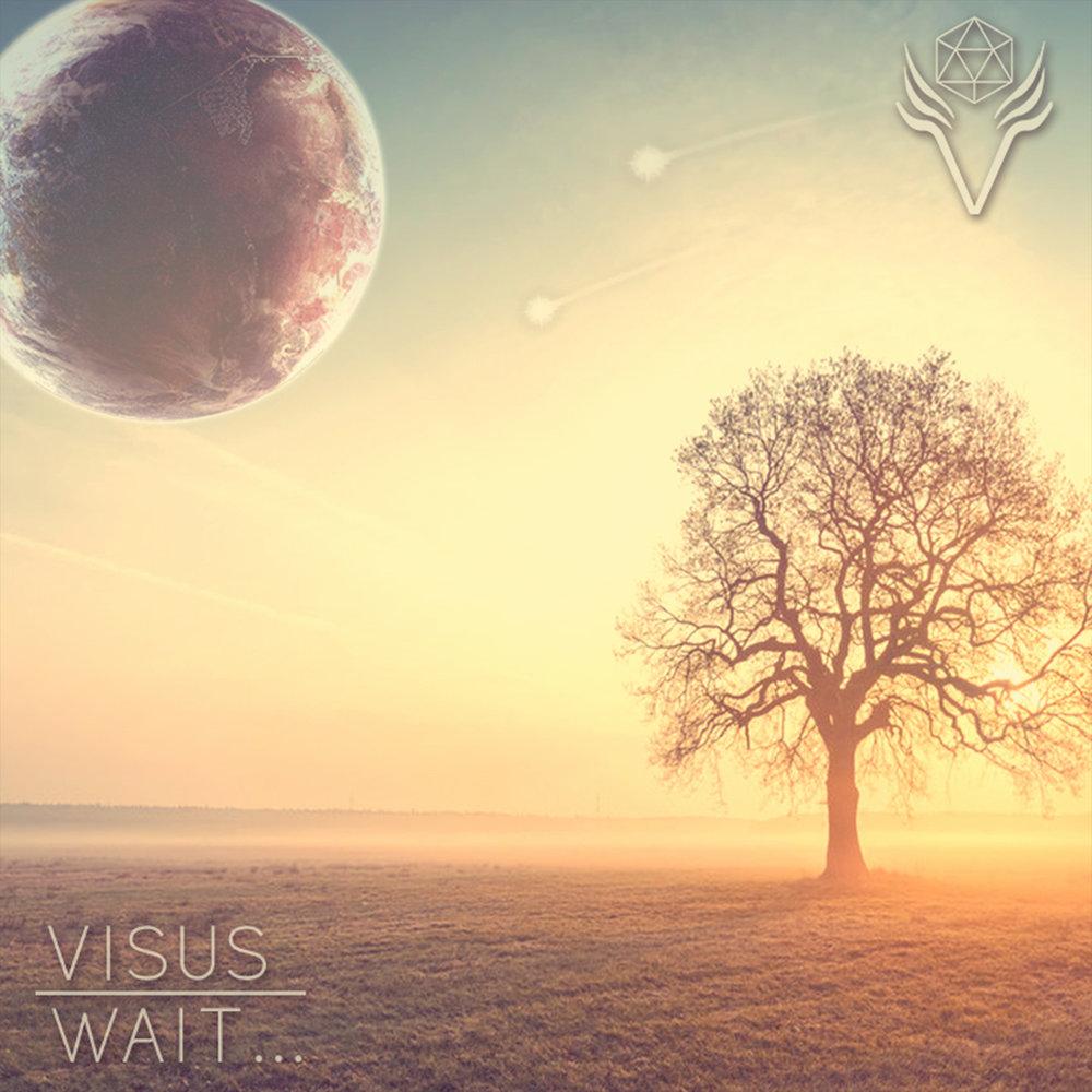 VISUS // Wait...