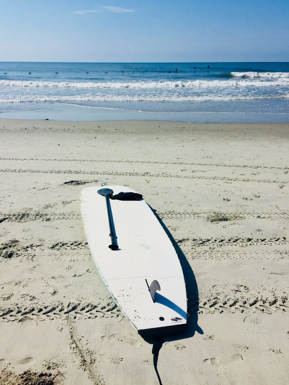 Paddle board beach view